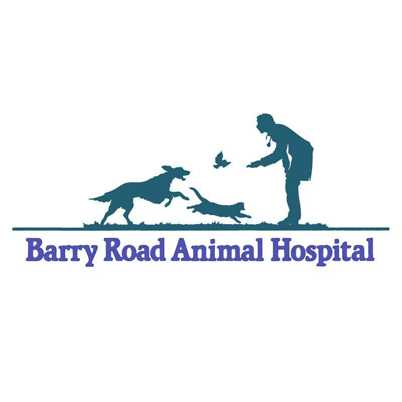 walker road animal hospital reviews