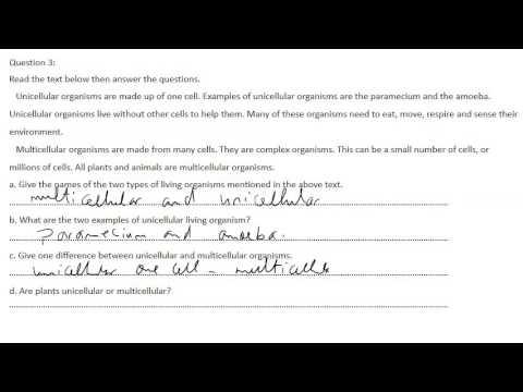 grade nine science exam review